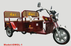 Electric Tricycle Gwgl-1 pictures & photos