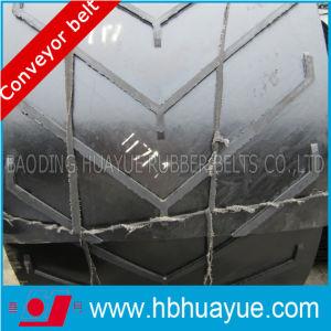Chevron Pattern Conveyor Belts (B400-2200) pictures & photos