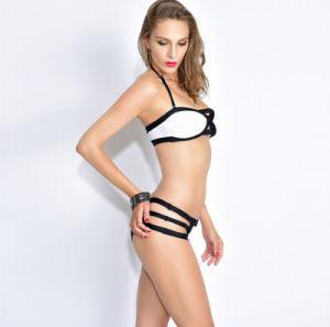 Manufacturer Sex Spider′s Web Bikini Slim Two-Piece Women′s Swimwear pictures & photos