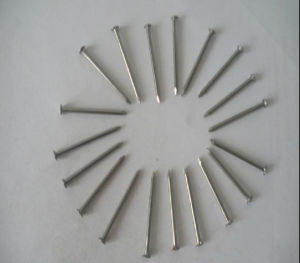 China Supplier Iron Flat Head Nail Polished Construction Common Nail pictures & photos