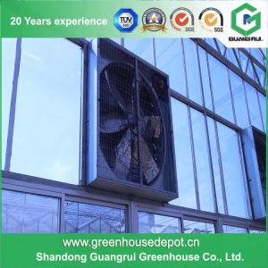 High Efficiency and Low Cost Greenhouse Cooling System pictures & photos