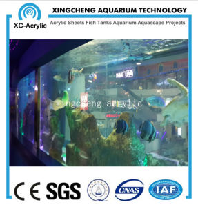 Customized UV Acrylic Fish Tank of Aquarium Project pictures & photos