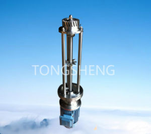 Stainless Steel Batch High Shear Dispersing Agitator
