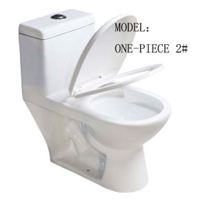 Sanitary Ware Single Piece Toilet pictures & photos