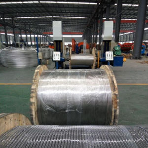 Aluminum-Twisted Steel Stranded ACSR Conductors pictures & photos