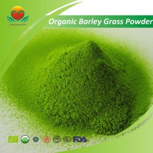 Manufacture Supply Organic Barley Grass Powder pictures & photos