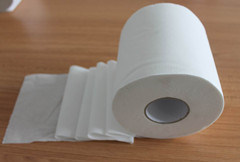 2ply&3ply Virgin Pulp Toilet Paper pictures & photos