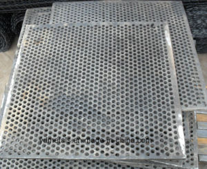 Perforated Metal Sheet (YND PQ-008) pictures & photos