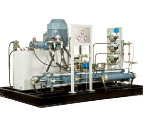 Natural Gas Compressor for Daughter Filling Station for NGV