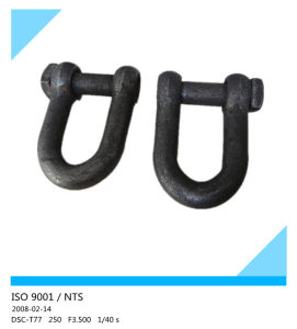 European Type Trawling D Shackle with Square Head pictures & photos