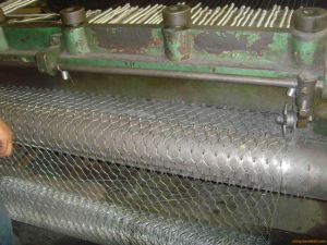 Galvanized Iron Hexagonal Wire Mesh pictures & photos