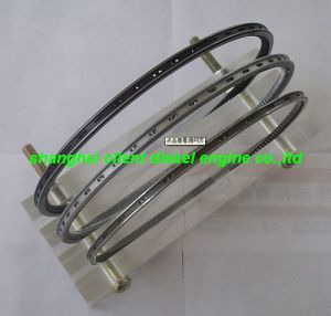 High Quality Engine Parts Wartsila Piston Ring pictures & photos