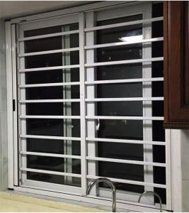 Invisible Roller Mosquito Screen Window pictures & photos
