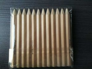 Drumstick Pencil for Writing and Painting pictures & photos