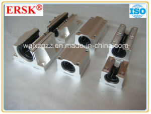 Long Life and Low Noise Linear Motion Ball Slide Units pictures & photos