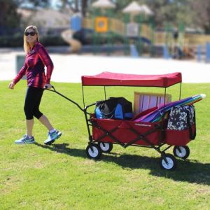 Easygowagon Folding Collapsible Utility Wagon Fits in Trunk of Standard Car Red pictures & photos