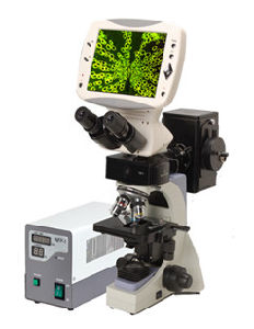 Med-L-DMS-853 Compound Digital LCD Fluorescence Microscope pictures & photos