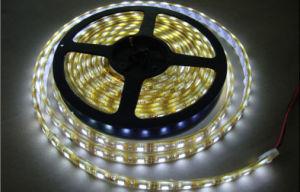 Single Color 14.4W / M SMD 2835 LED Strip 120 LEDs Per Meter DC24V IP65 LED Strip pictures & photos