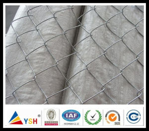 """Electro Galvanized Chain Link Fence (2"""", 3"""")"""