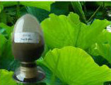 High Purity Nuciferine 98% on Sale pictures & photos