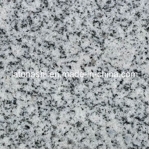 Padang Light White Granite, Grey G633 Granite Tile From China pictures & photos