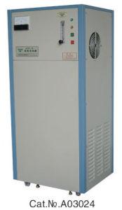 CE Ozone Generator (CFZY-24B) pictures & photos