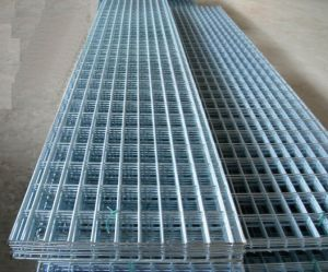 Square Hole Galvanized Welded Wire Mesh Panel pictures & photos