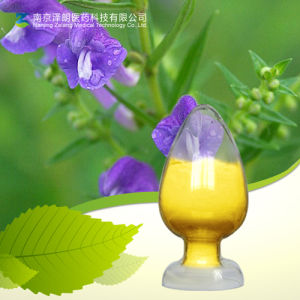 Factory Supply Natural Scutellaria Extract Baicalin pictures & photos