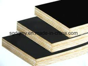 Film Faced Plywood with 12mm 15mm 16mm 18mm pictures & photos