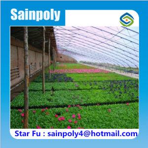 China Modern Design Agricultural Type Solar Greenhouse pictures & photos