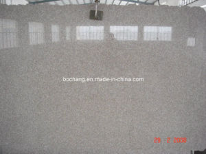 G635 G636 Chinese Pink Granite Big Slab pictures & photos