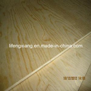 Maple Pine Plywood