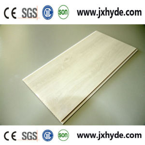 250*9mm Light Weight PVC Plastic Panel (RN-96) pictures & photos