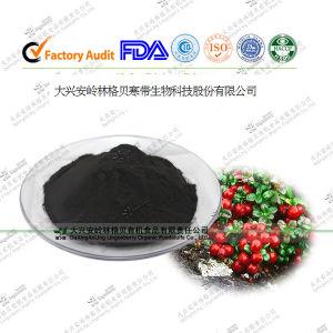 Natural Anthocyanin, Anti-Oxidant Herbal Blend Powder, Formulation OEM Service
