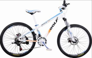 Hot Sale Popular Mountain Bike (MTB-013) pictures & photos