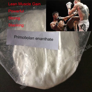 Primobolan Steroid Methenolone Enanthate 100mg/Ml for Muscle Building pictures & photos