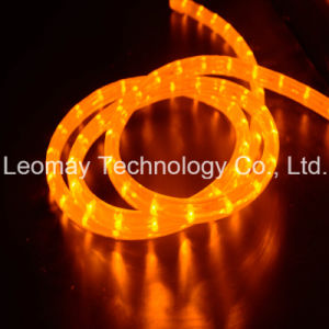Flexible LED Neon Rope Light Of Y2 LED Lamp Light pictures & photos