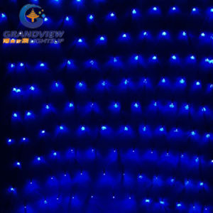 2m Width Blue Light LED Net Light with 8-Mode pictures & photos