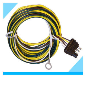 Factory Electric Truck Wire Cable Harness Assembly pictures & photos