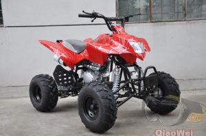 Air Cooled 250CC ATV (QW-ATV-08C)