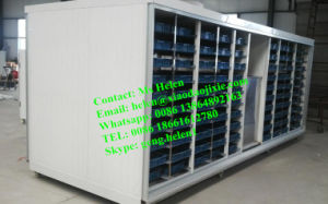 Automatic Hydroponic Bud Seeding Machine, Animal Fodder Machine pictures & photos