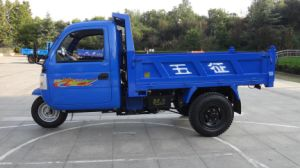 Three Wheel Truck with Air Brake pictures & photos