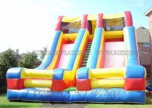 Inflatable Giant Slide, Two Slipway Slide, Double Lane Slide (B4054) pictures & photos