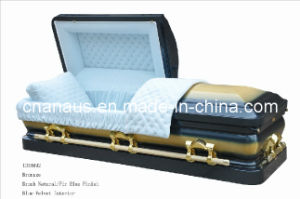 American Style Casket (ANA) pictures & photos