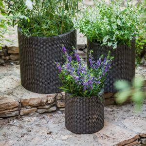 3 Piece Polypropylene Resin Rattan Pot Planter Set pictures & photos