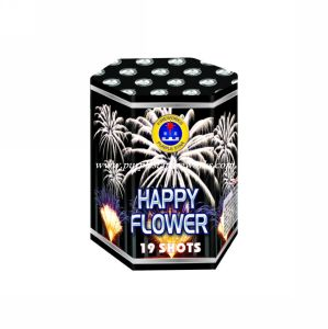 PS3055A-19 19shot 1.4G 0336 Cake Fireworks