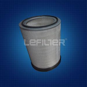 P117781+P182040 Donaldson Air Filter Element pictures & photos
