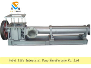G Series High Viscosity Mono Screw Slurry Transfer Pump pictures & photos