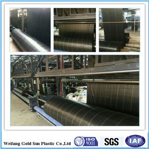 PP Woven Geotextile Fabric/Ground Cover Fabric pictures & photos