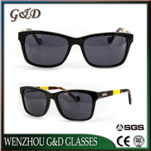 High Quality Popular Design Acetate Sunglasses Buck 15-333452 pictures & photos